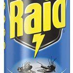 Insetticida Raid