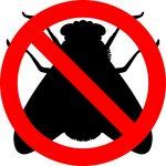 No alle mosche