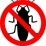 No agli scarafaggi