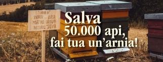 L'INIZIATIVA ETICA: Salva 50.000 Api, adotta un'arnia