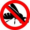 Come tenere lontano le vespe da casa | GUIDA