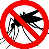 Consigli pratici per difendersi dalle zanzare | GUIDA
