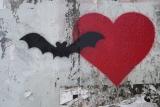 Combattere le zanzare con i pipistrelli: comprati una bat box