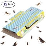 Trapro – Trappola adesiva per scarafaggi, con esca, non tossica e ecologica, 12 pezzi